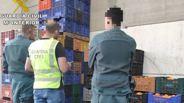 La Guardia Civil durante la operación